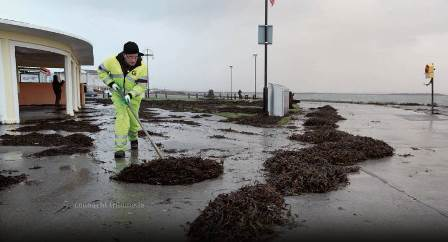 In His Own Mind, Council Worker Cleaning Up After Storm Playing Vital Role In Search & Rescue Operations